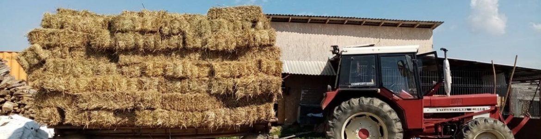 Alle Jahre wieder…steht der rumänische Winter vor der Tür