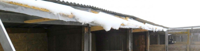 akueller stand der dachrenovierung in zone 4