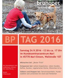 BP-Tag 2016