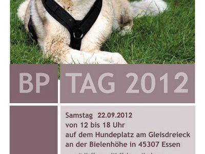BrunoPet-Sommerfest 2012